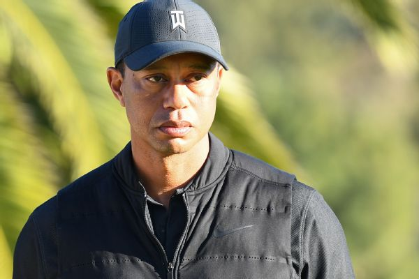 Tiger 'in good spirits' after follow-up procedures