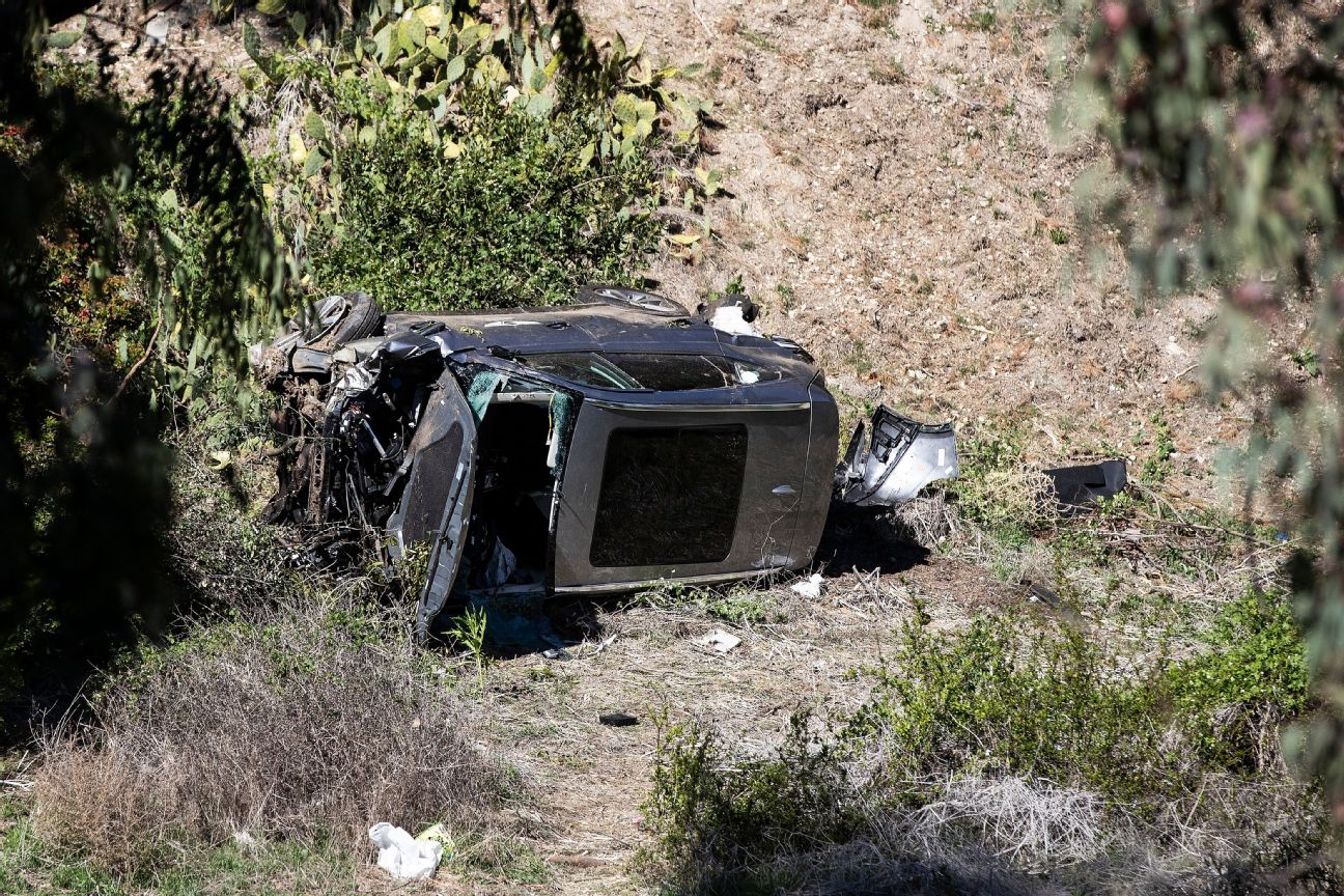 Affidavit: Tiger found unconscious after crash