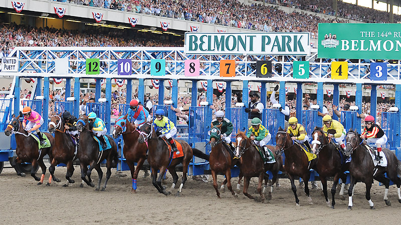 2017 Belmont Stakes Horse Racing Betting Preview | Harry
