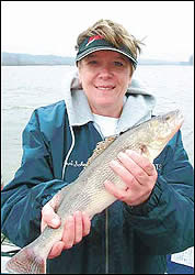 Go mad for sauger on the Illinois this March