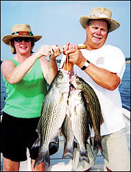 Lake Conroe is the spot for hybrid bass